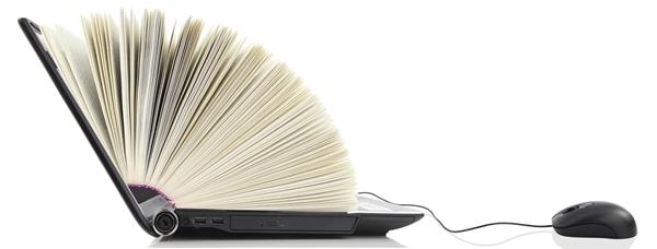 SchrijfZinnig kan uw webredactie voeren
